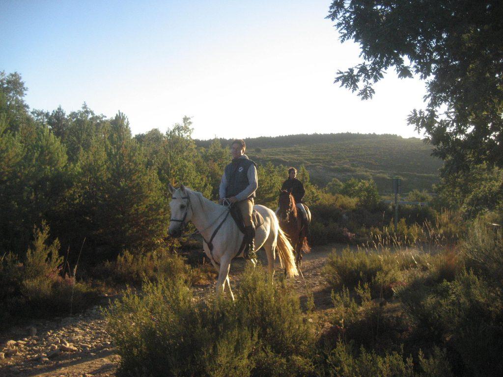 Ayosha-horseback-riding